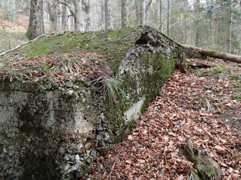 Arrière du bunker du SP4