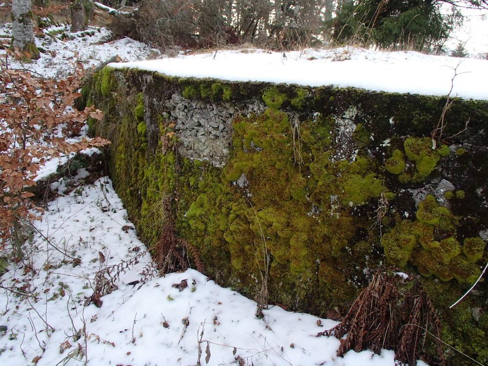 Bunker du Stützpunkt 0 vu de côté
