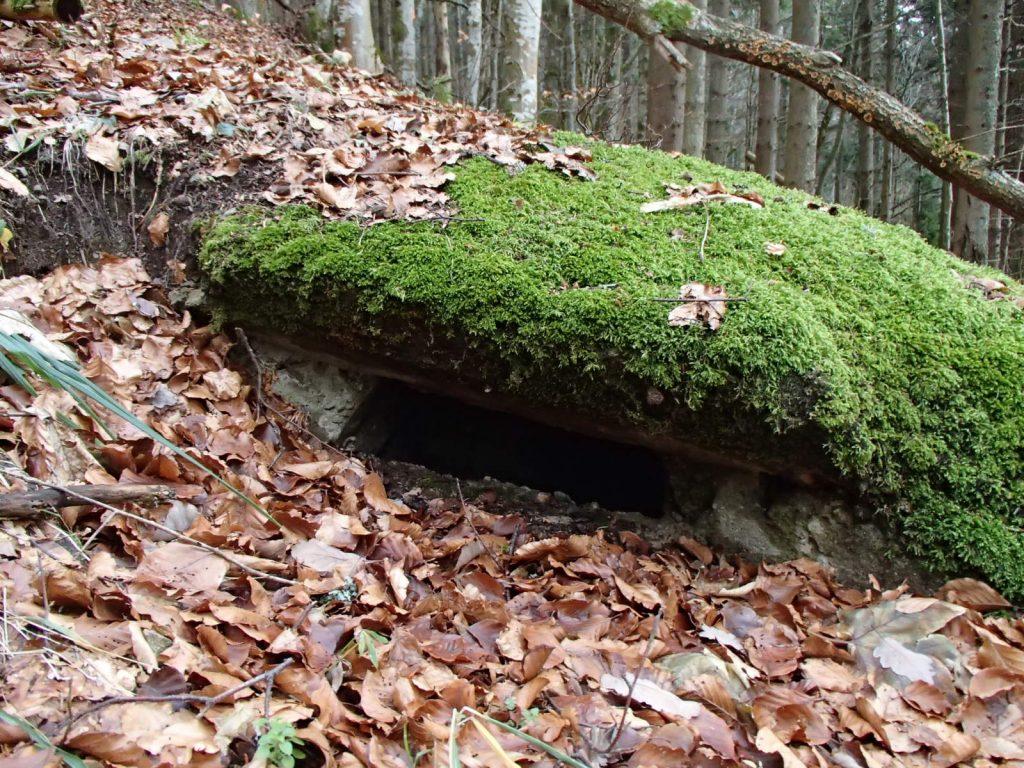 Observatoire au bunker du SP4