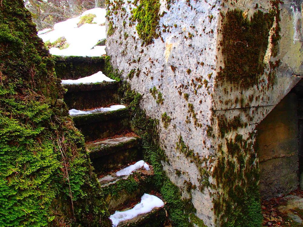 L'escalier au bunker du Stützpunkt Rehkopf