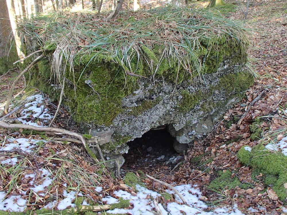 Une chatière du bunker au SP7
