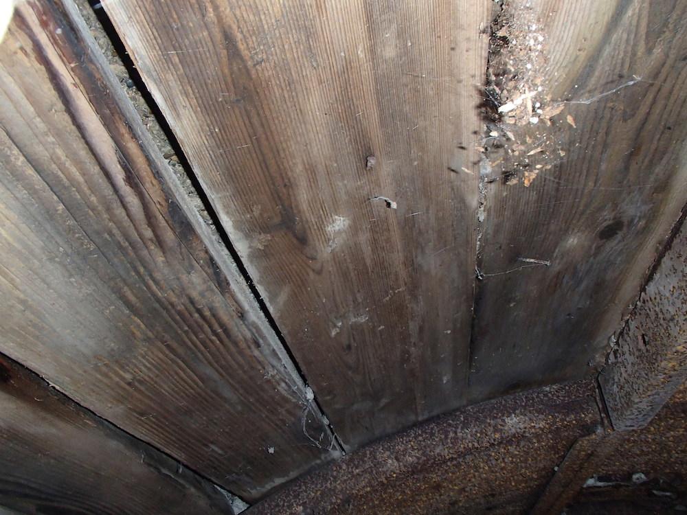 Le plafond en bois du SP8